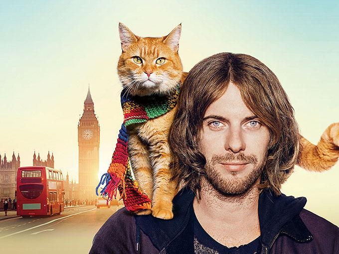 映画『ボブという名の猫 幸せのハイタッチ』