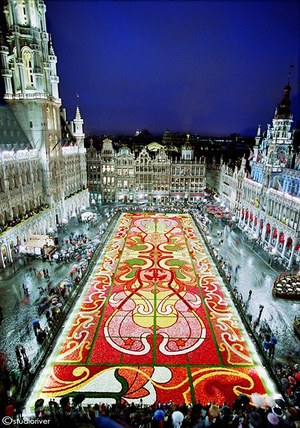 W300 brusselsflowercarpet 02