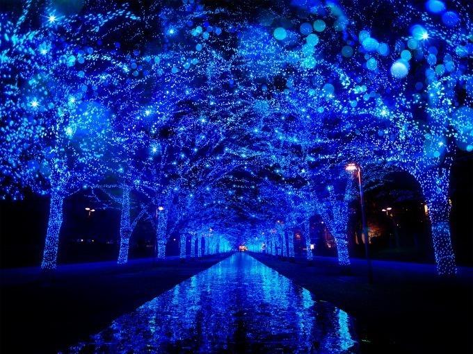 「青の洞窟 SHIBUYA」