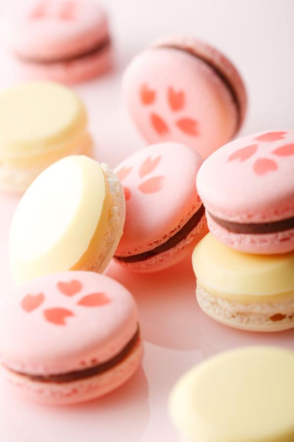 <ホテルニューオータニ大阪>酒粕と桜の風味の「紅白マカロン」