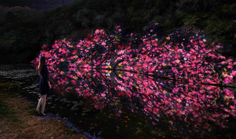 増殖する生命の石壁 - 紫雲山 / Ever Blossoming Life Rock Wall - Mt. Shiun teamLab, 2020, Digitized Nature, Sound: Hideaki Takahashi